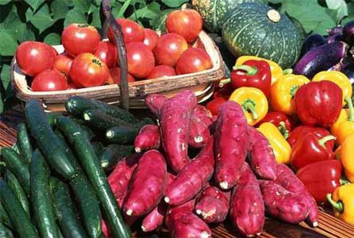 邹平孙大妈活血化瘀常吃的10种食物